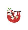 female sloth with little bahanging on branch vector image