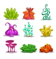 Funny colorful fantasy plants vector image vector image