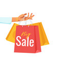 hand holding paper sale bags vector image vector image