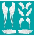 Heraldic Wings Set for Tattoo or Mascot Design vector image