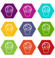 round cactus icons set 9 vector image vector image