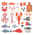 seafood sea fish shellfish and lobster on vector image vector image