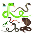 snakes and lizard cartoon icons set vector image
