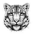 snow leopard graphic monochrome portrait vector image vector image