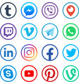 social media icons popular media web social vector image vector image