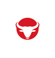 bull taurus logo template icon vector image vector image