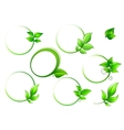 Frames set with geen leaves vector image