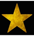 gold triangle star vector image