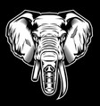 head elephant drawing black amp white on vector image