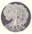 Oak tree Stylized isolated vector image