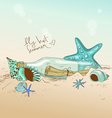 seashells starfish and bottle with a message vector image