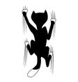 climbing cat vector image vector image