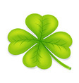 clover four leaf irish saint patrick day ireland vector image