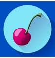 Fruit cherry icon flat style vector image