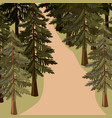 pine tree forest landscape blurred colors vector image