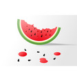 ripe watermelon light background vector image