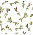 spring branches with leaves and buds vector image vector image