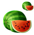 watermelon cartoon icon isolated on white vector image vector image