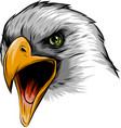a eagle head mascot in the white vector image