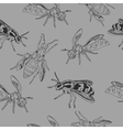 Bee pattern Wasp vector image vector image