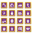 berries icons set purple vector image vector image