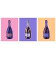 champagne bottle hand drawing vector image vector image