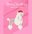 christmas and new year holiday poodle dog card vector image vector image