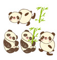 cute icons with animal panda and bamboo vector image