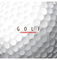 golf ball close-up vector image vector image