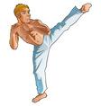 Martial art pose vector image vector image