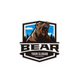 modern professional grizzly bear logo vector image vector image