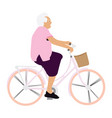 old woman riding a bicycle vector image