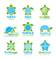 turtle logo ocean wild animal stylized symbols vector image