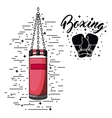 boxing sport design vector image