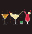 cosmopolitan cocktail old fashioned margarita vector image