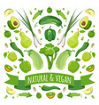 green fruits and vegetables vector image