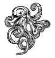 octopus drawing black amp white 4 vector image vector image