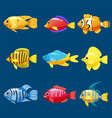 set cartoon funny fish characters colorful vector image vector image
