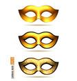 set golden carnival mask vector image