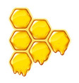 yelllow honeycombs with flowing honey isolated vector image vector image