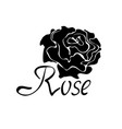 black silhouette logo with rose vector image vector image