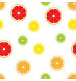 citrus fruits slice pattern seamless vector image