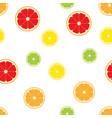 citrus fruits slice pattern seamless vector image