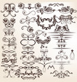 collection calligraphic elements vector image
