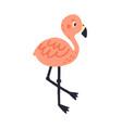 cute pink hand drawn flamingo flat vector image