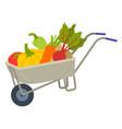 fresh harvest in cart vegetable in trolley vector image vector image