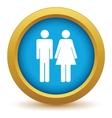 Gender icon vector image