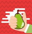 hand holding pear fresh colored background vector image