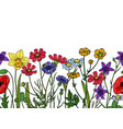 wild flowers seamless border field of meadow herb vector image