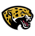 angry leopard mascot vector image vector image